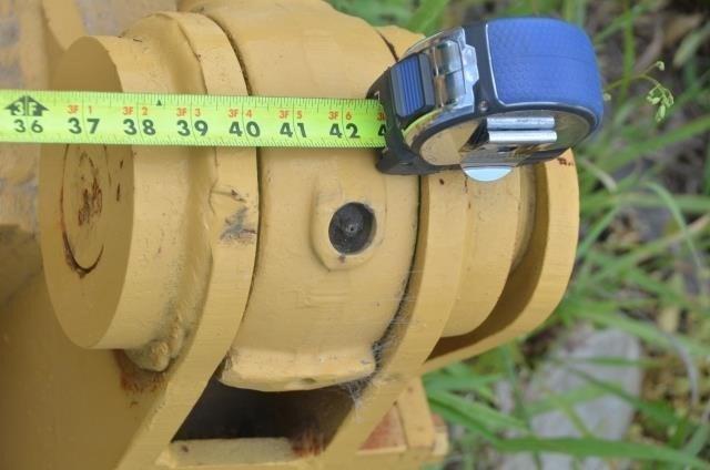 Caterpillar Image 9
