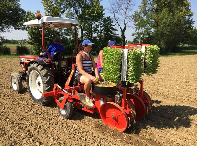 2018 Checchi & Magli Unitrium 1 row Planter For Sale