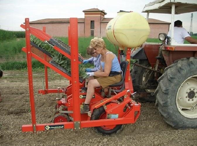 2019 Checchi & Magli Wolf 1 row Hemp Transplanter Planter For Sale