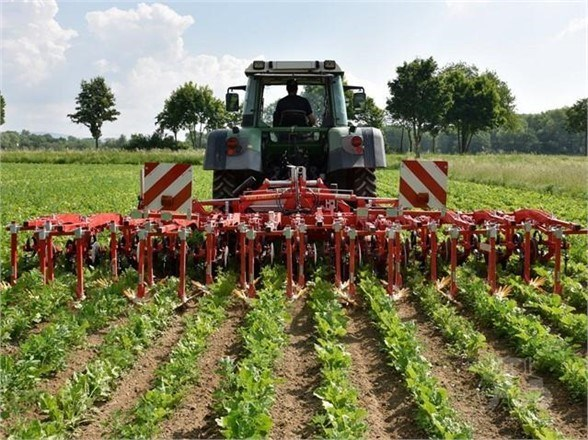2021 Other CHOPSTAR 8R30 Row Crop Cultivator For Sale